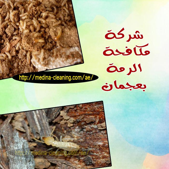 مكافحة الرمة بعجمان - مكافحة النمل الابيض بعجمان