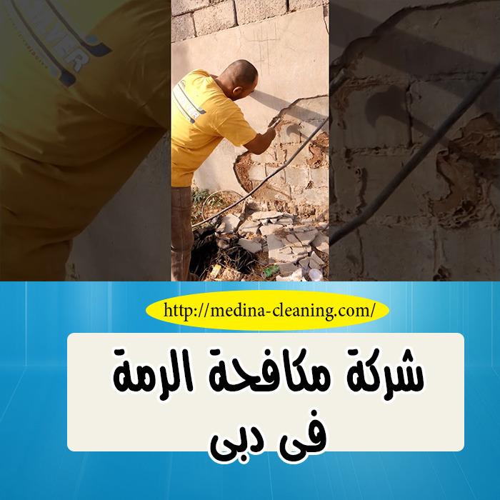 شركة مكافحة الرمة دبي