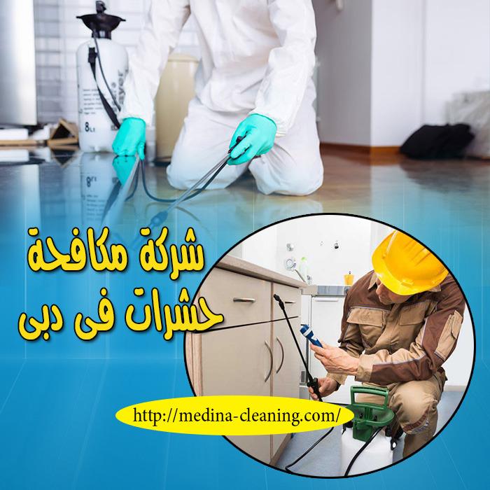 شركة مكافحة الحشرات فى دبى